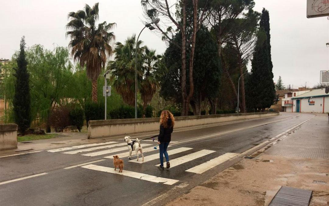 El estado de alarma permite sacar a pasear a las mascotas./ L.C.