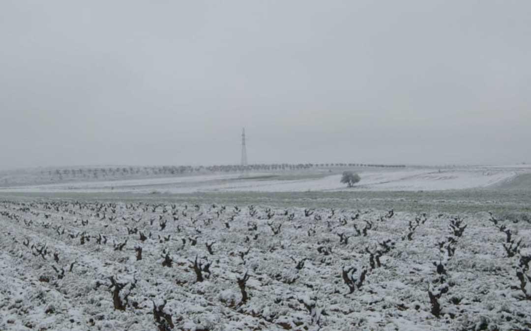 Los campos de Muniesa amanecían con una fina capa de nieve. Foto. Alberto Blasco.