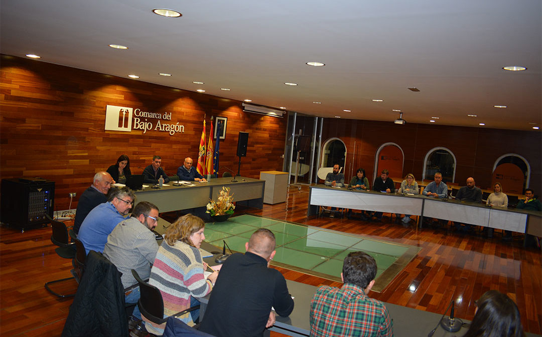 El Bajo Aragón crea 5 grupos de trabajo para abordar el post-covid