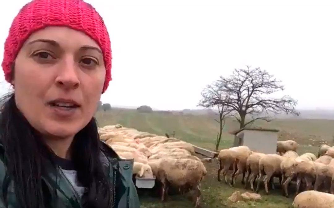 Silvia, ganadera de ovino de Teruel, protagonista del video realizado por UPA en Aragón./ UPA-Aragón
