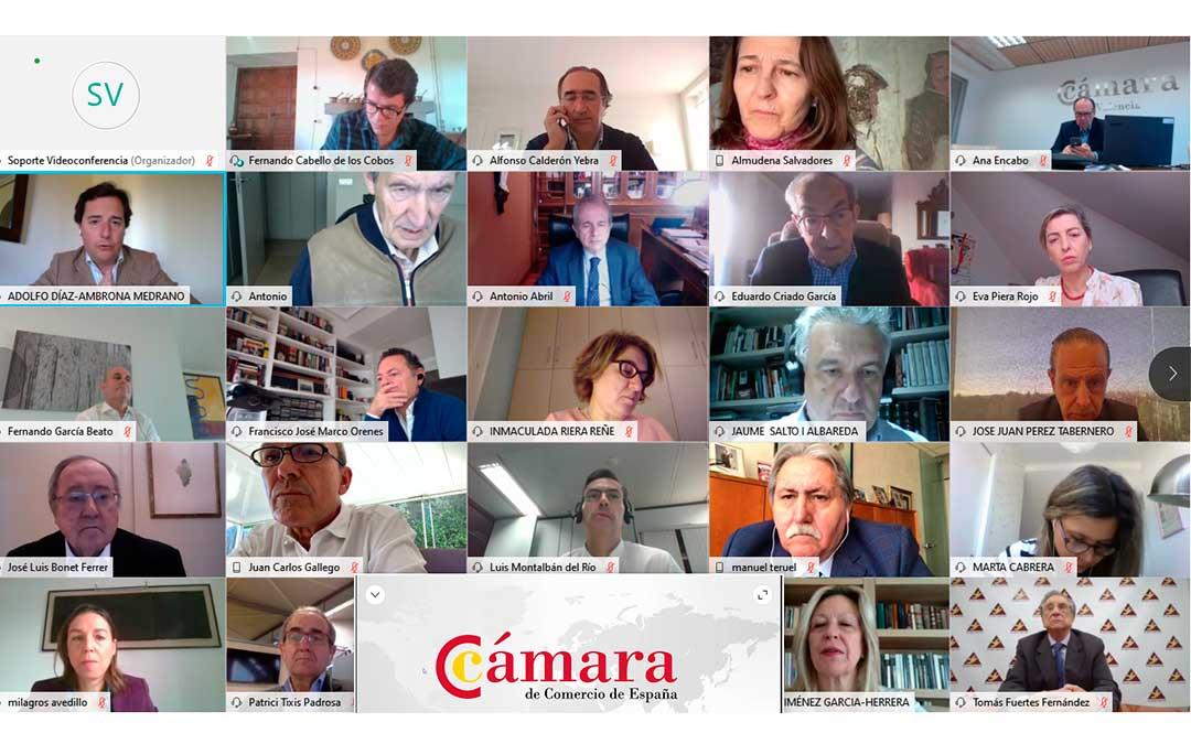El Pleno de la Cámara de España reunido a través de una videoconferencia./ Cámara de Comercio de Teruel