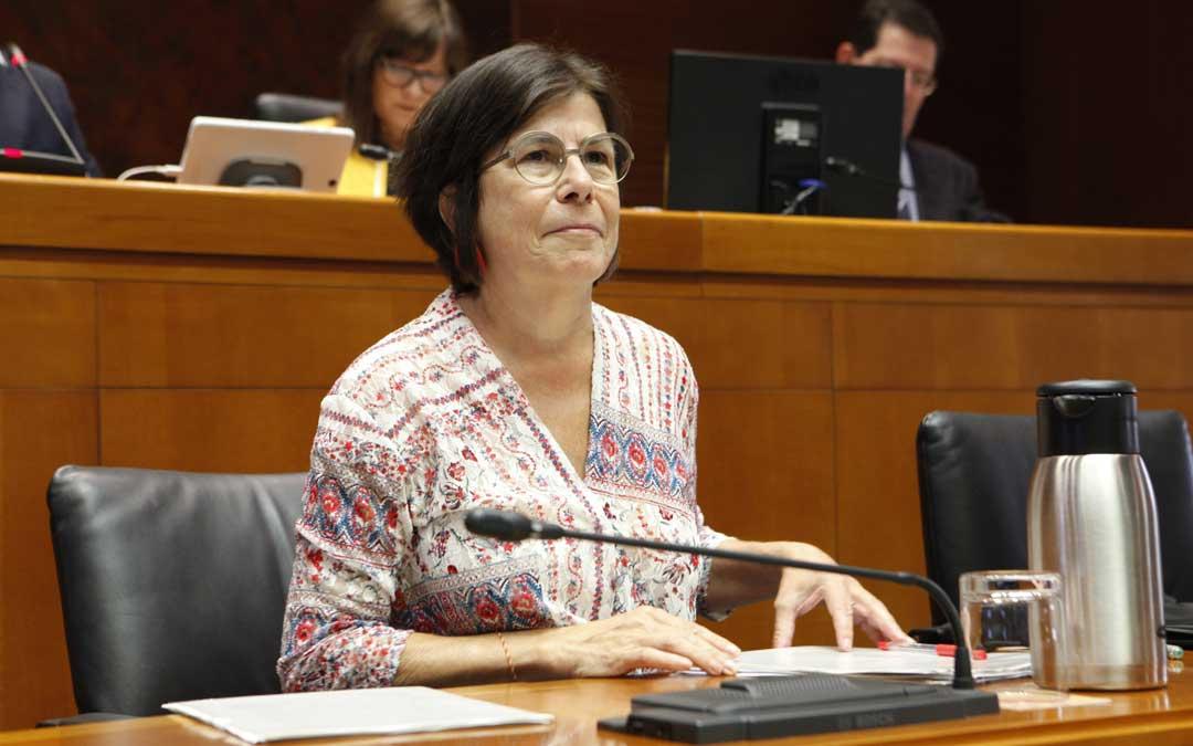 La directora de Personal del departamento de Educación, Carmen Martínez Urtasun, en una comparecencia en las Cortes de Aragón. / Cortes