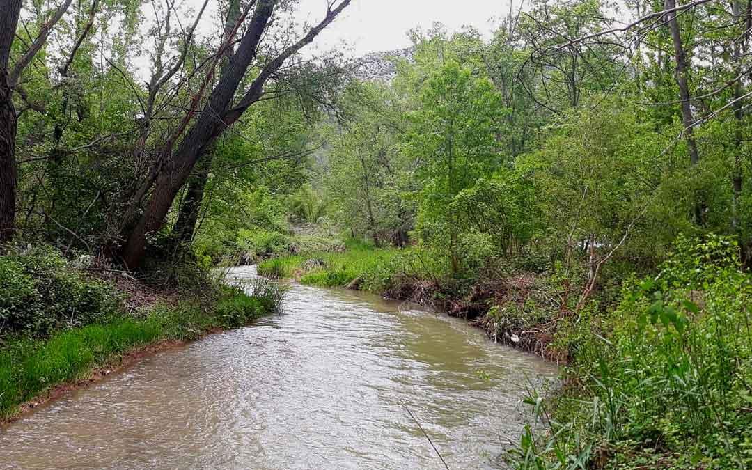 La CHE adjudica la mejora de la dinámica fluvial del río Martín