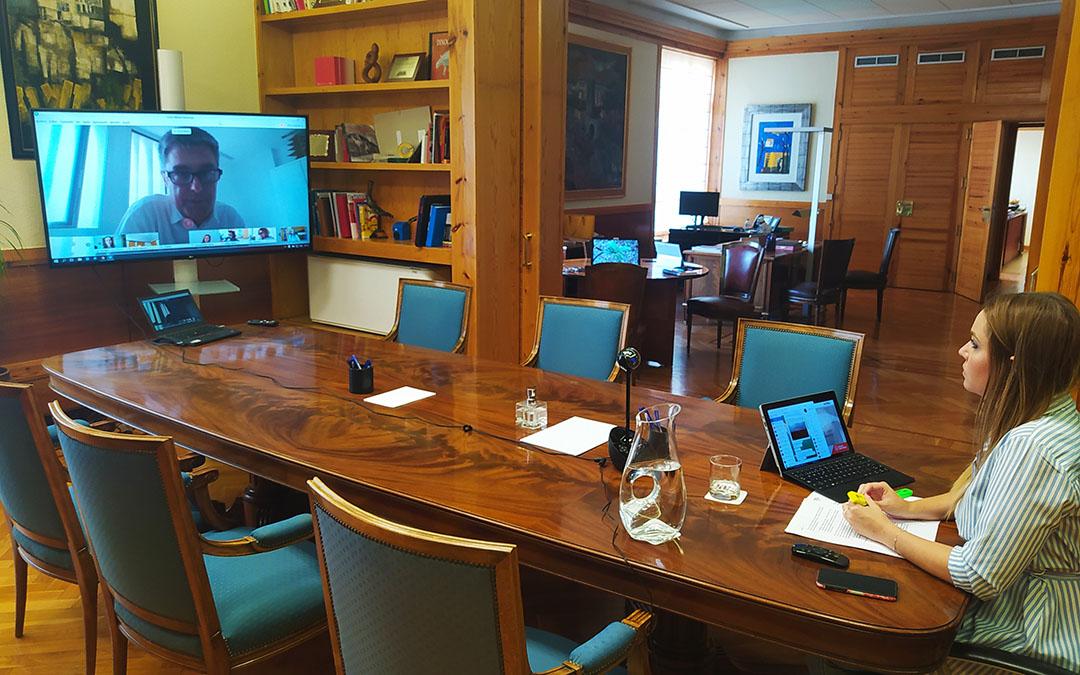 Reunión telemática de Maru Díaz con los expertos
