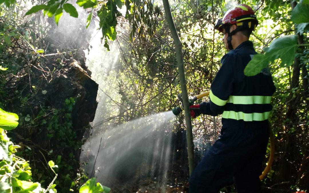 Extinguido un incendio forestal en Ariño