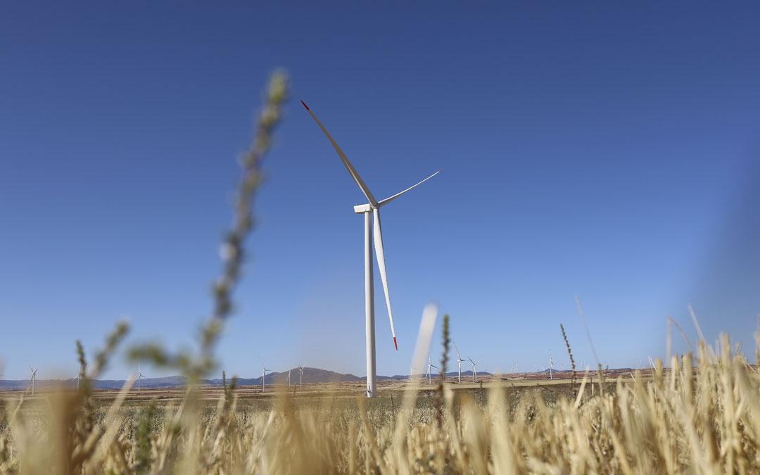 Bruc llega a un acuerdo con Forestalia para comprar 2.000 MW solares