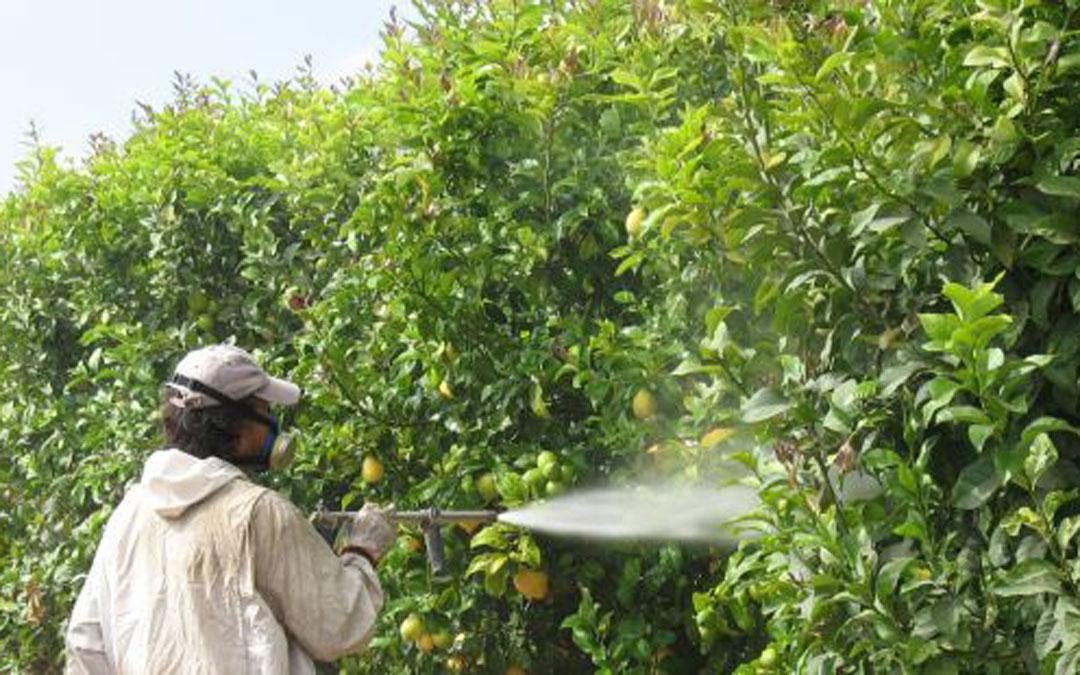 Un trabajador en un campo aragonés / DGA