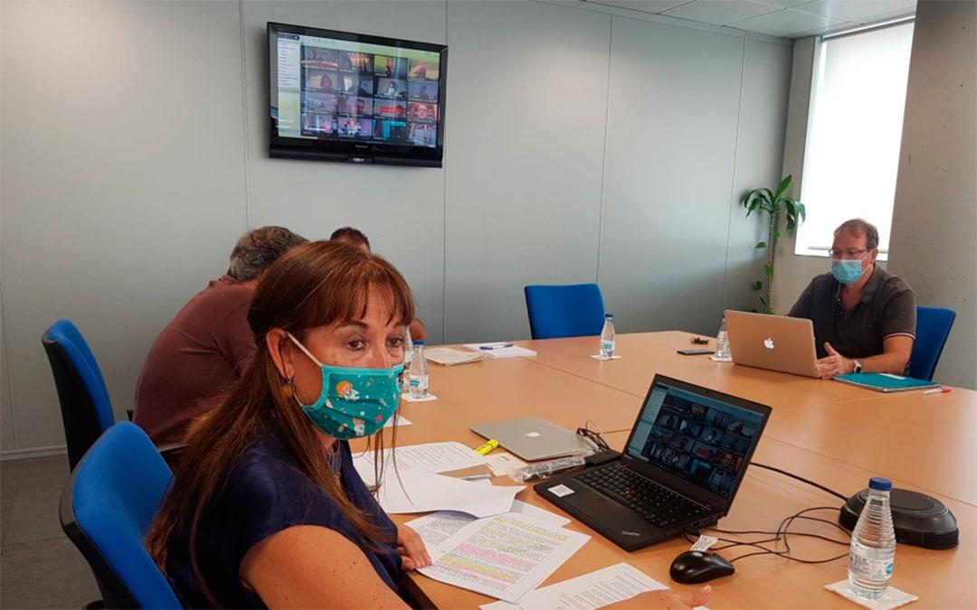 La consejera de Sanidad, Sira Repollés, en el Consejo Interterritorial extraordinario que se ha celebrado este viernes./ DGA