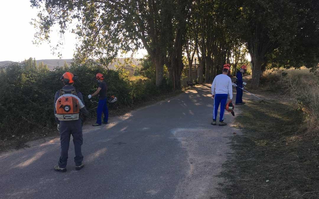Los cuatro jóvenes realizando tareas de poda en el municipio./Ayto. Andorra