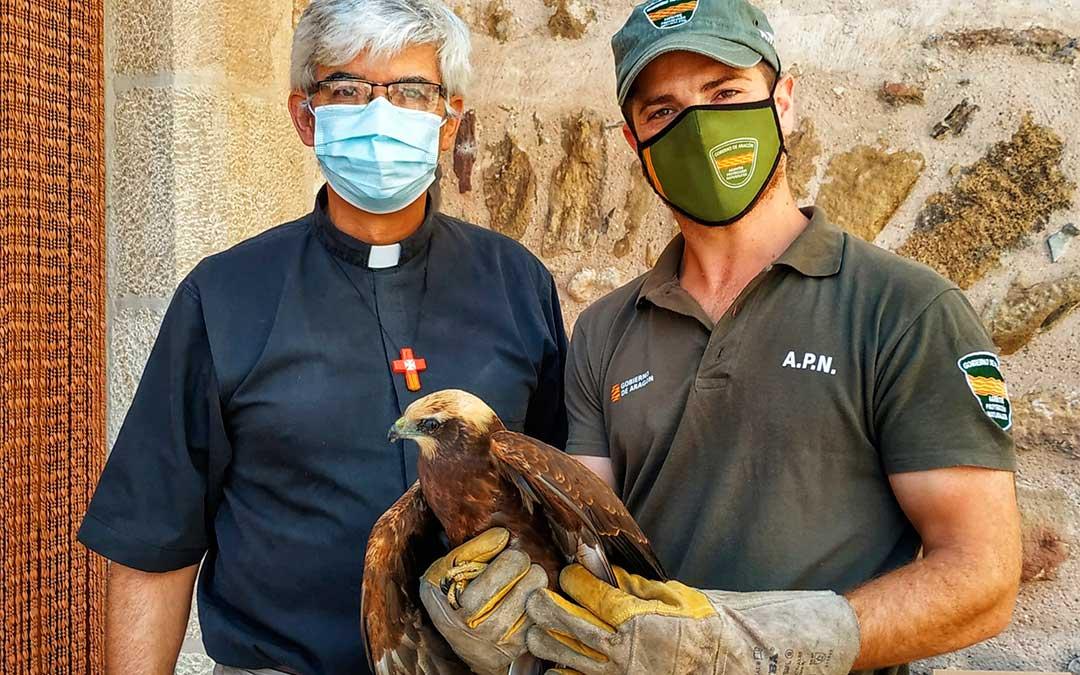 El fray Fernando Ruiz y el APN Marcos Flecha junto al aguilucho lagunero rescatado./ Fernando Ruiz
