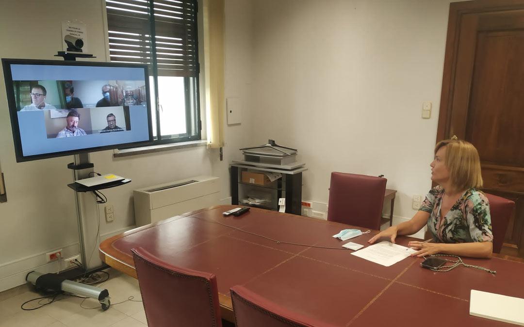 Reunión por videoconferencia de Pilar Alegría con representantes políticos y agentes sociales./LA COMARCA