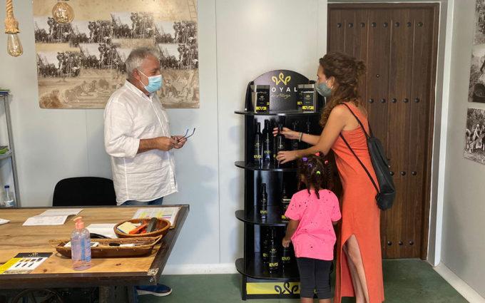 Alloza inicia el proceso administrativo para entrar en la Denominación de Origen del aceite