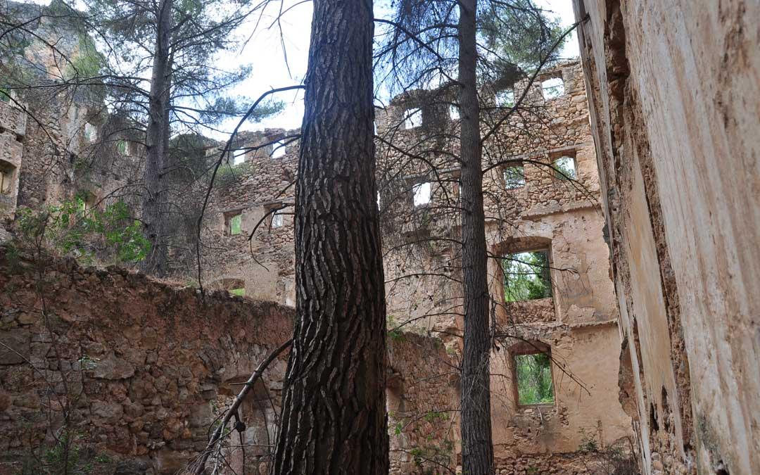 En el interior solo se conservan las paredes de piedra. El edificio carece de cubiertas e incluso han crecido bosque.