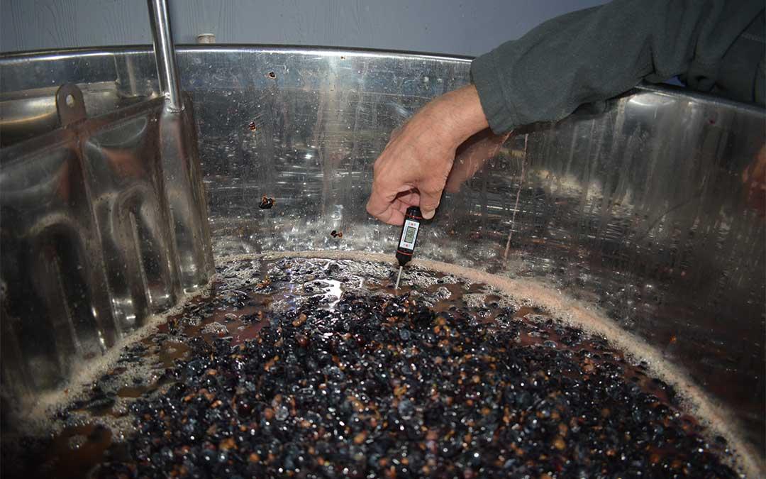 Comprobación de la temperatura del vino./ M. Celiméndiz