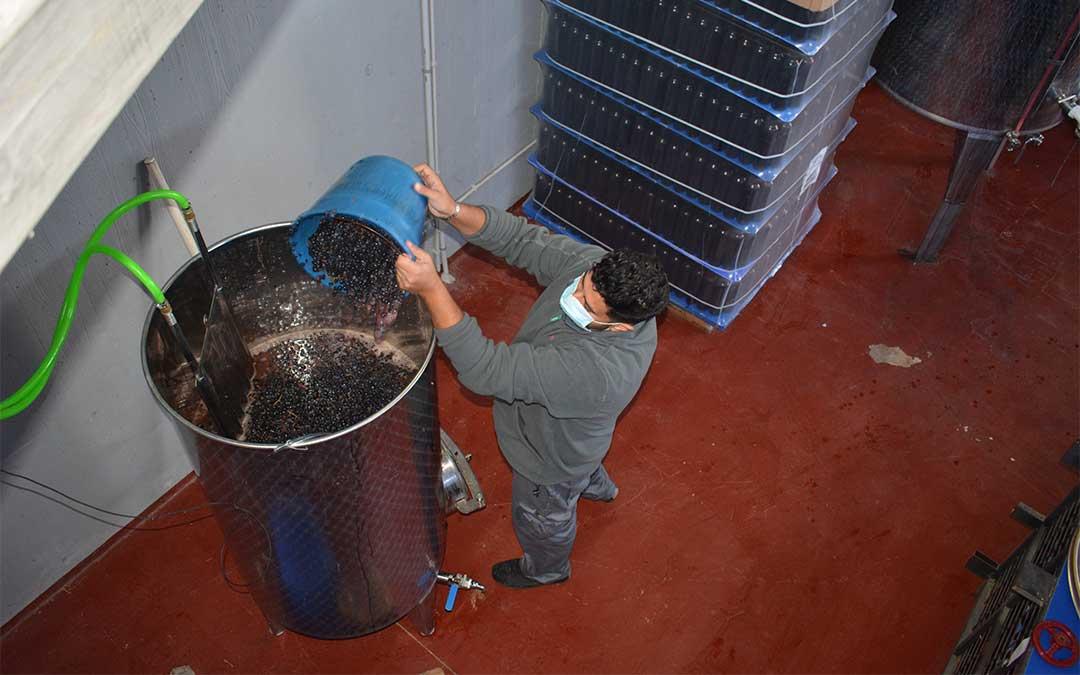 Las uvas pisadas se depositan en un depósito de acero inoxidable para su fermentación./ M. Celiméndiz