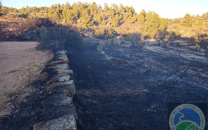 Una nueva quema agrícola descontrolada provoca un incendio en Valjunquera