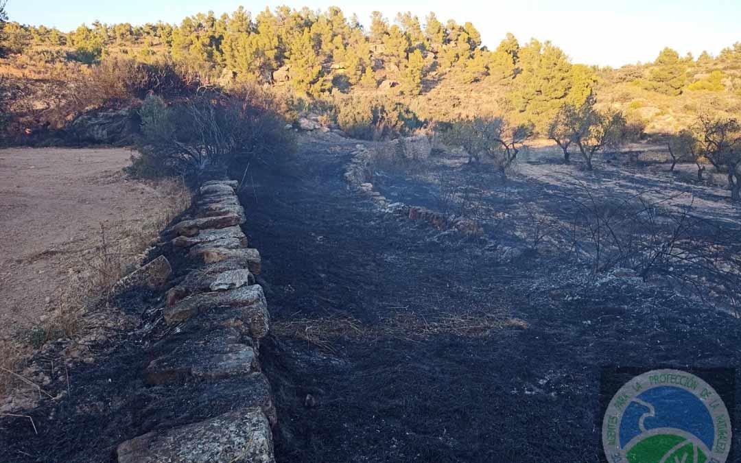 Incendio provocado por una quema agrícola en Valjunquera./AAPNA