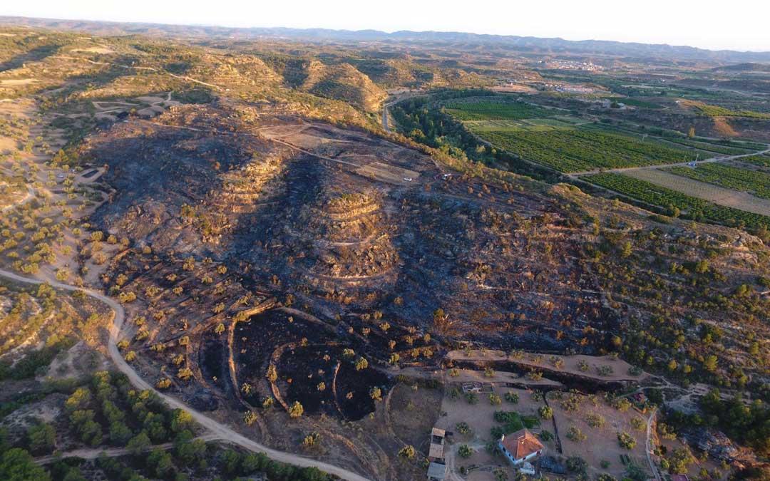 Zona quemada susceptible de ser replantada / Departamento Medio Ambiente