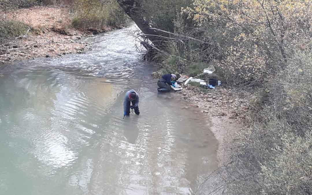 Técnicos de la CHE tomando muestras de agua en el río Guadalope a su paso entre Castellote y Mas de las Matas