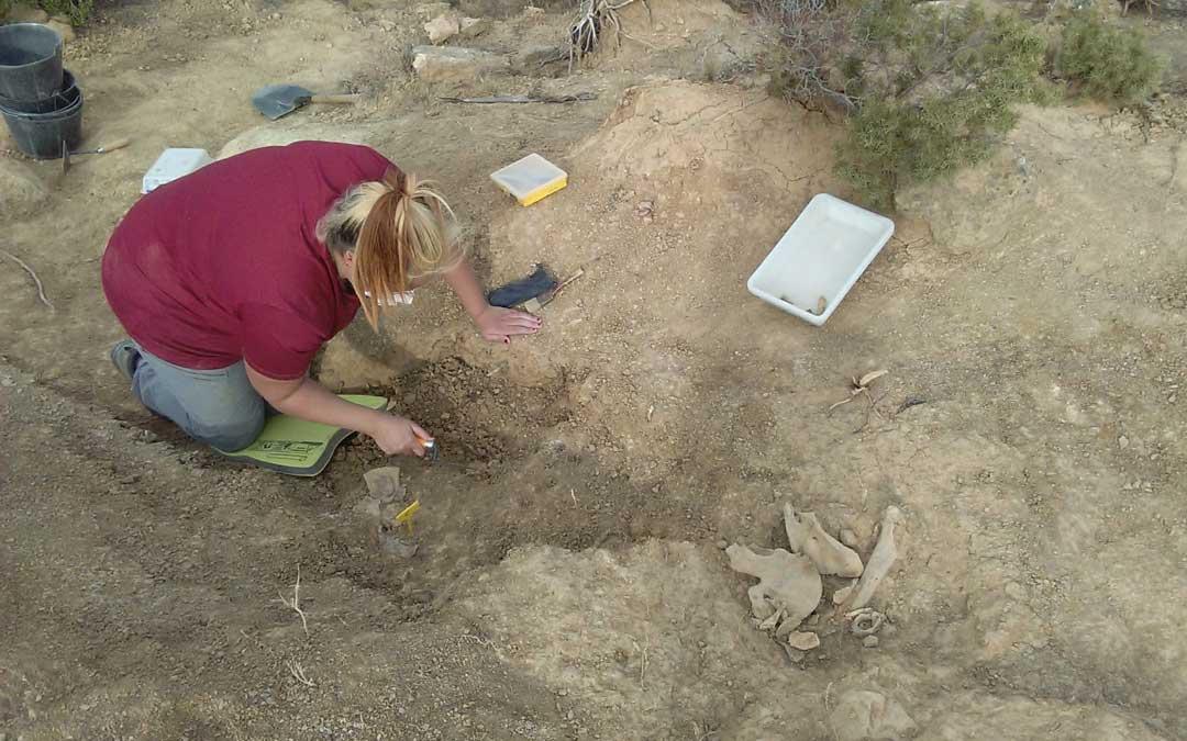 En el laboratorio se realizará un estudio antropológico de los restos y se intentará extraer su ADN. También se estudiarán los objetos encontrados