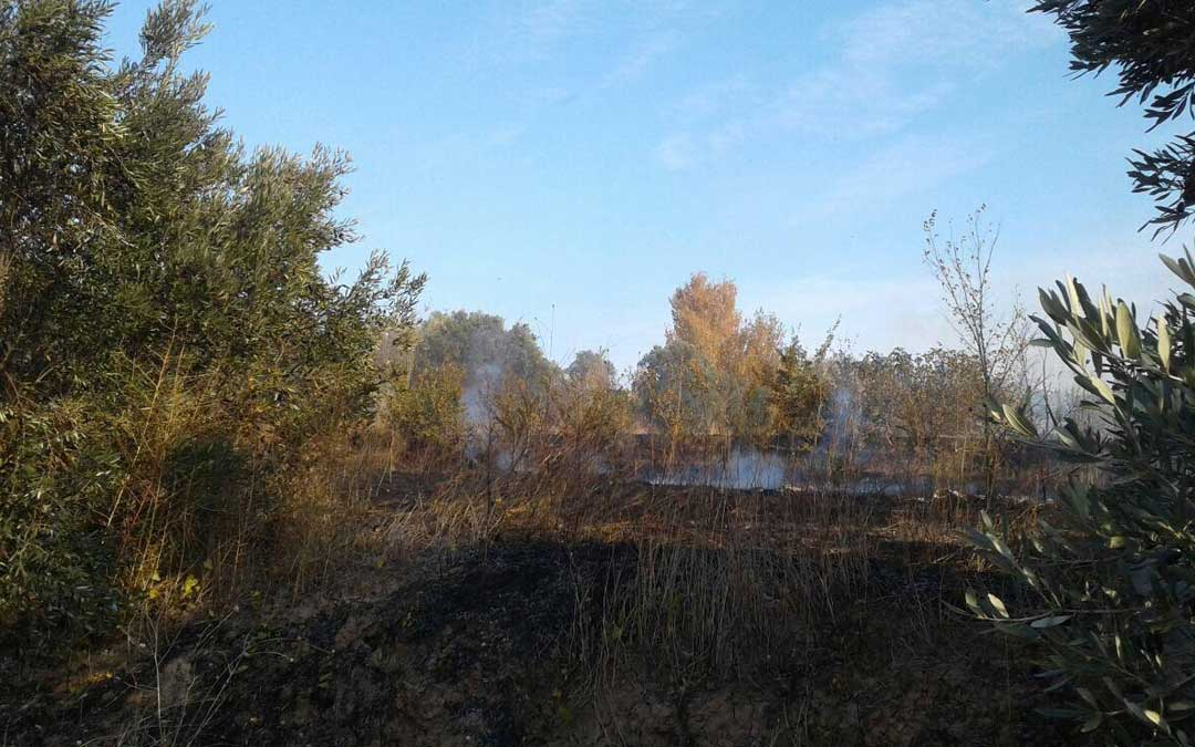 Zona afectada por el incendio./AAPNA