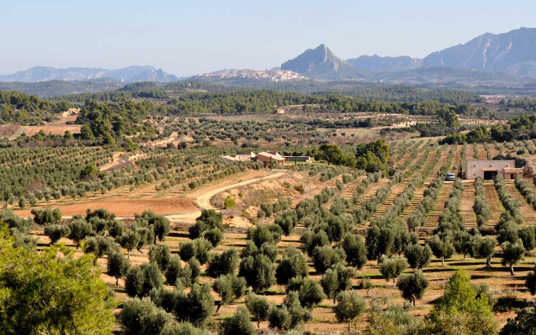 Diezdedos está situado en la Vall de Ballestero, en Cretas.