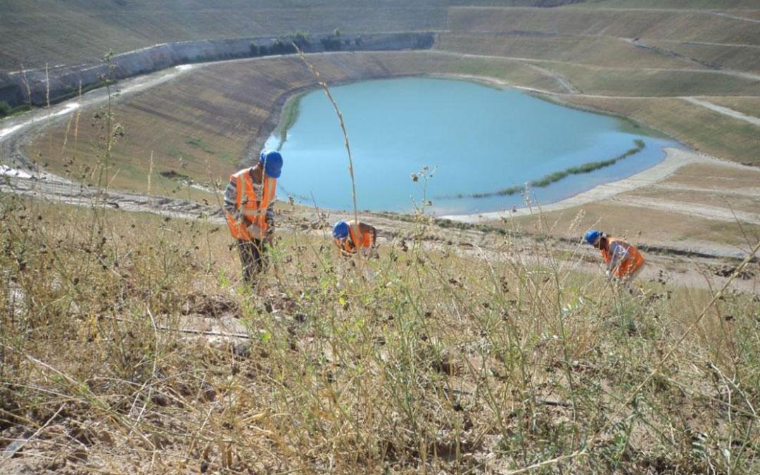 Las instalaciones se ubicarán en una antigua mina a cielo abierto de Estercuel ya restaurada medioambientalmente /Heraldo