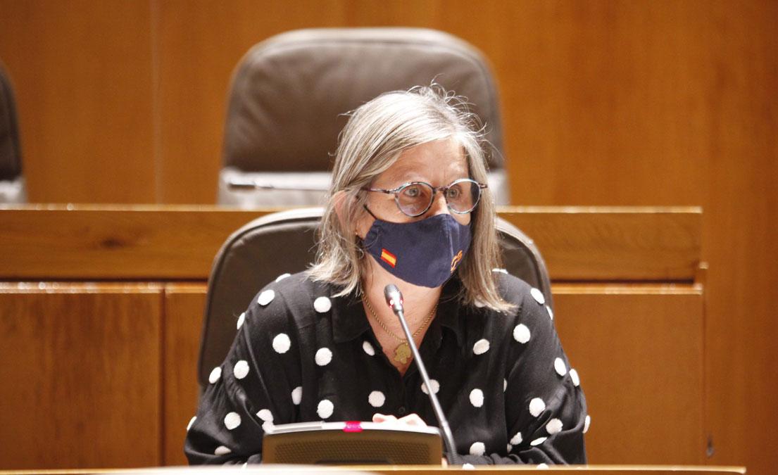 Diputada de Ciudadanos Beatriz García en las Cortes./Cortes de Aragón