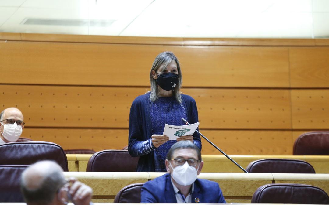 La senadora Beatriz Martin, formulando la pregunta al Ministro de Interior./Teruel Existe