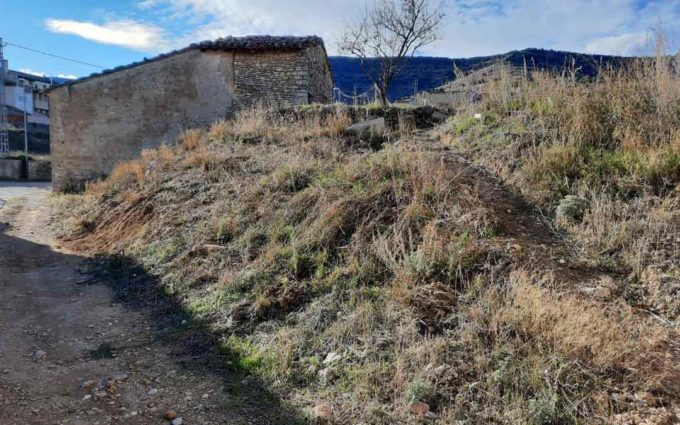 La Cuba planta medio centenar de árboles en la zona de las eras