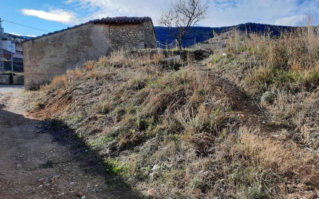 Área en la que se han plantado ejemplares de pinos, cipreses y álamos./F. Marín