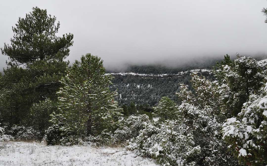 Un manto de nieve cubre las montañas por encima de los 900 metros de altitud.