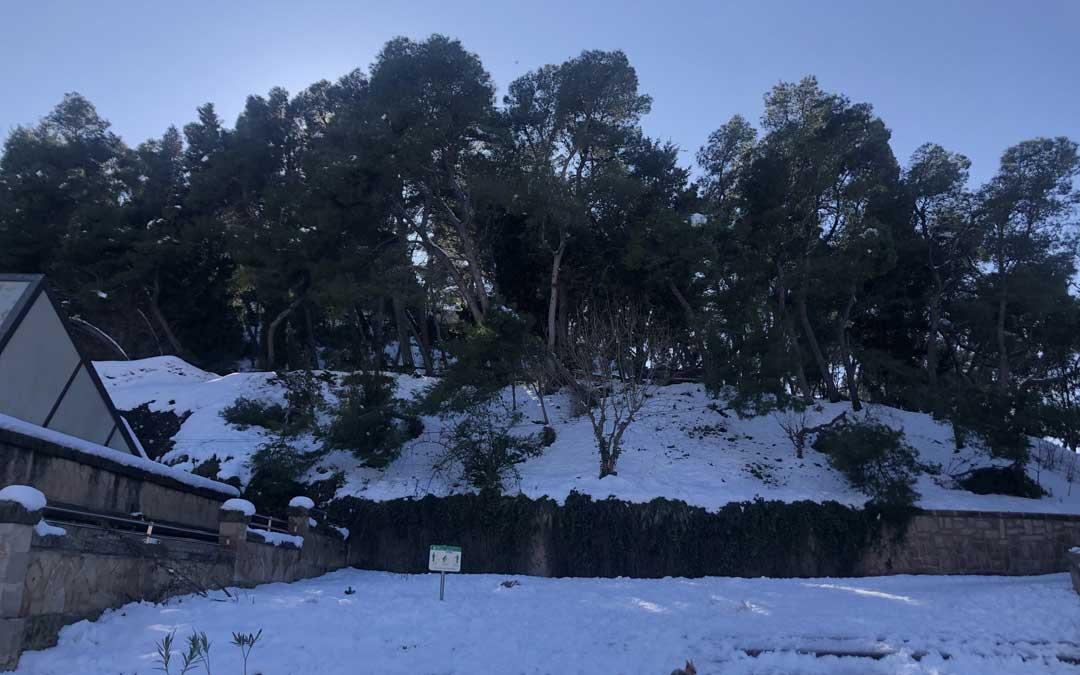El cerro se encuentra lleno de nieve y con árboles caídos / L. Castel