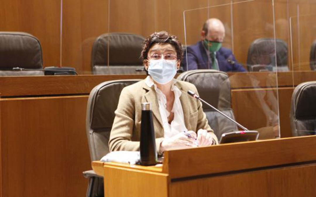 La diputada del PP, Ana Marín, durante su intervención en las Cortes. / CORTES DE ARAGÓN