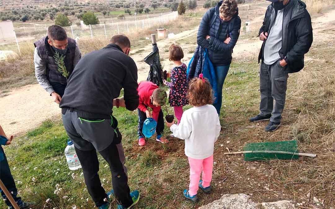 Plantada de árboles este sábado en Andorra / Ayto. Andorra