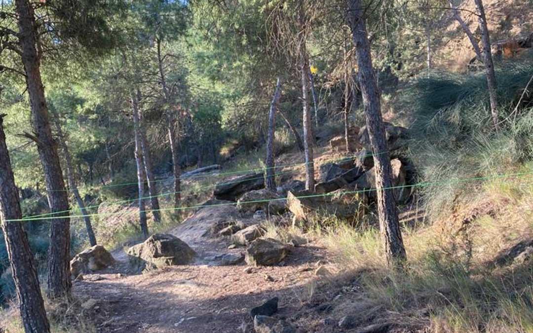 Cuerdas cruzadas para interrumpir el paso de ciclistas o deportistas en una zona de monte en Alcañiz./ L.C.