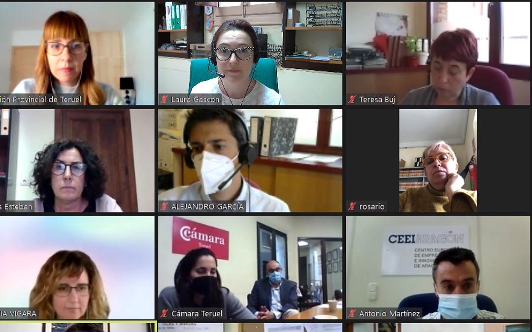 Momentos de la reunión telemática en la que han estado presentes las diputadas María Ariño y Rosario Pascual./DPT