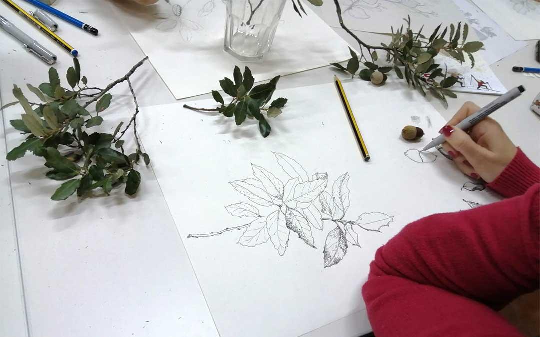 Ilustración botánica del sendero de Val de Molinos./ CEA Itaca