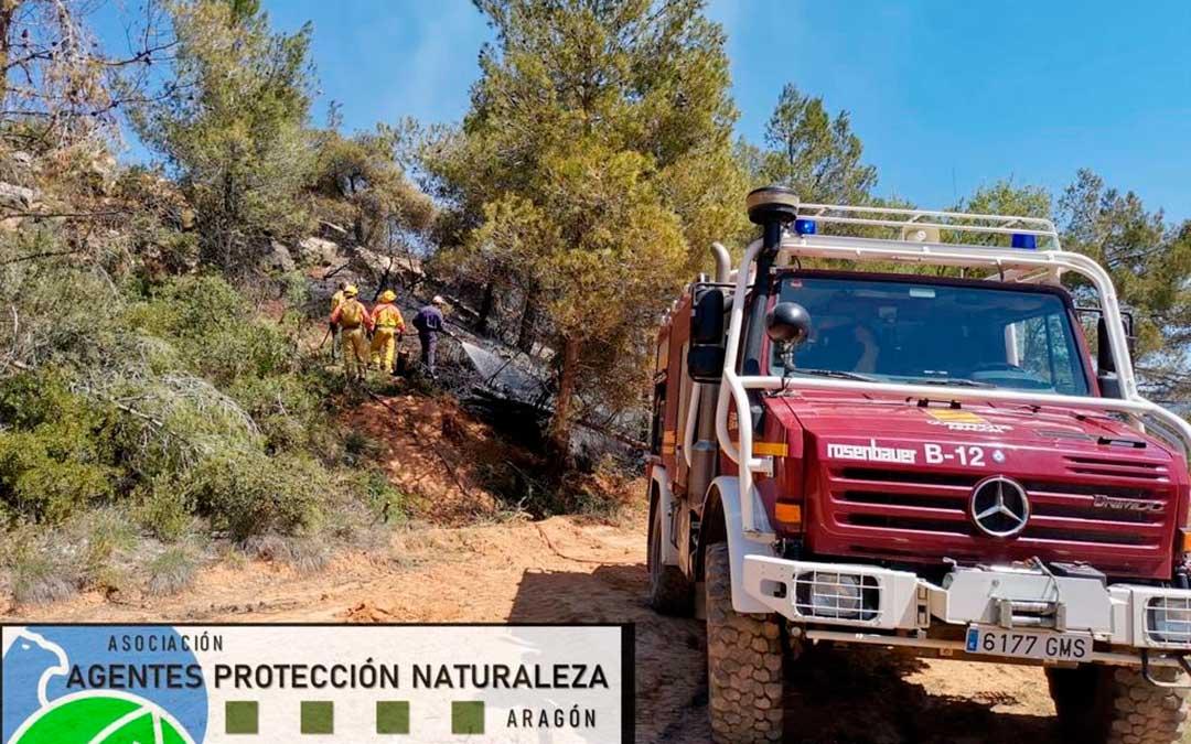 Las llamas han afectado a un monte cercano de matorral y pinar./ APN Aragón