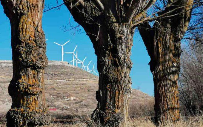 Los empresarios turolenses se desmarcan de CEOE Aragón sobre las renovables y piden que los propios municipios «decidan»
