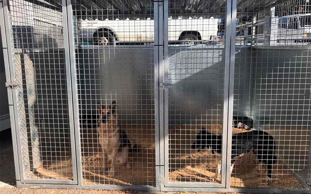 Instalaciones en las que se acoge a los animales./ DPT