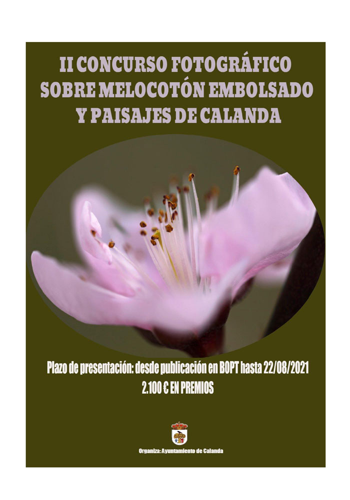 II Concurso fotográfico sobre el melocotón embolsado y paisajes de Calanda
