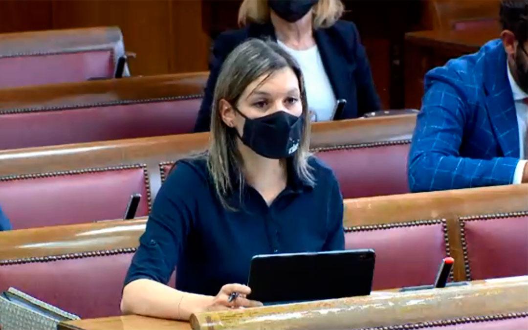 La senadora de Teruel Existe, Beatriz Martín./ T.E.