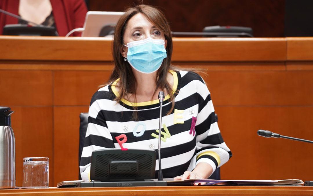 Soledad de la Puente, directora general de Trabajo, Autónomos y Economía Social./Cortes de Aragón