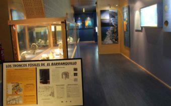 El territorio celebra el día de los Museos con numerosas propuestas