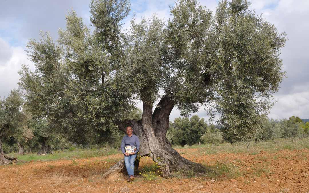 El coordinador del proyecto, Fernando Zorrilla, junto a una olivera centenaria en un olivar situado en las proximidades de Valderrobres. J.L.