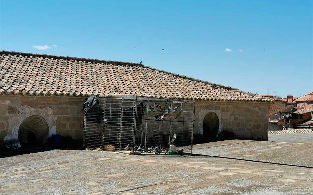 Jaula para palomas instalada en la colegiata de Caspe./ Ayuntamiento de Caspe