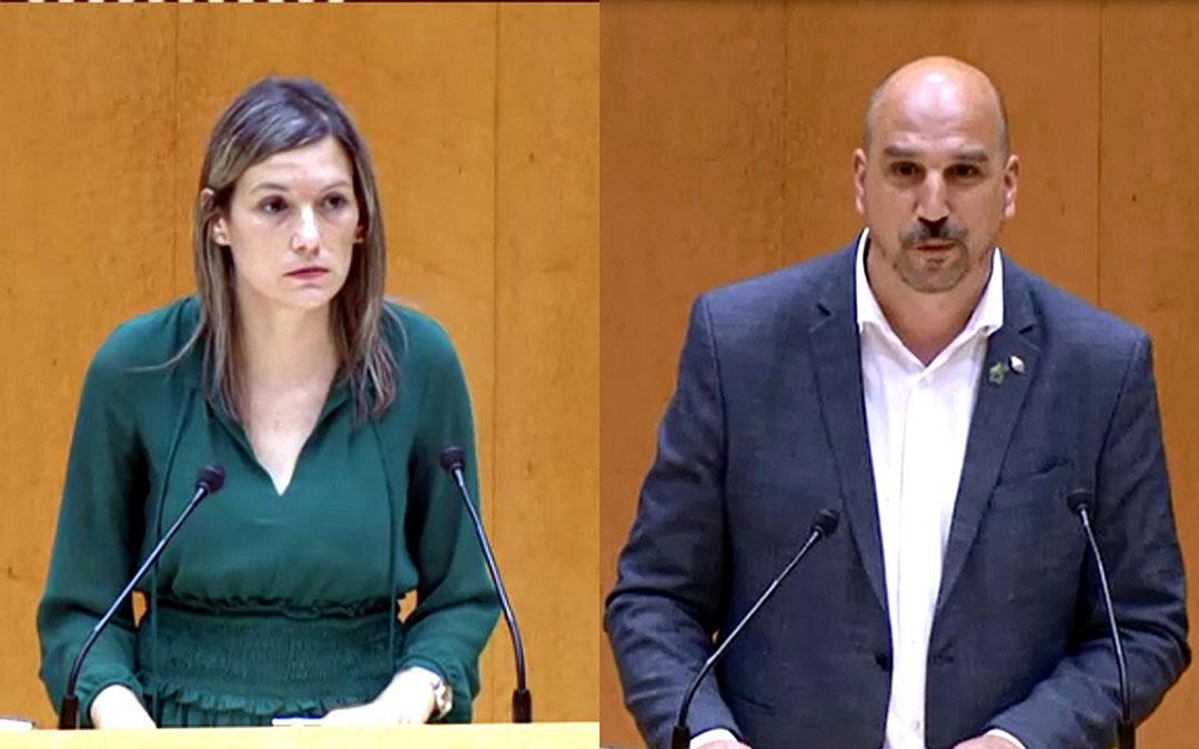 Los senadores Martín y Egea intervinieron en el pleno. / TERUEL EXISTE