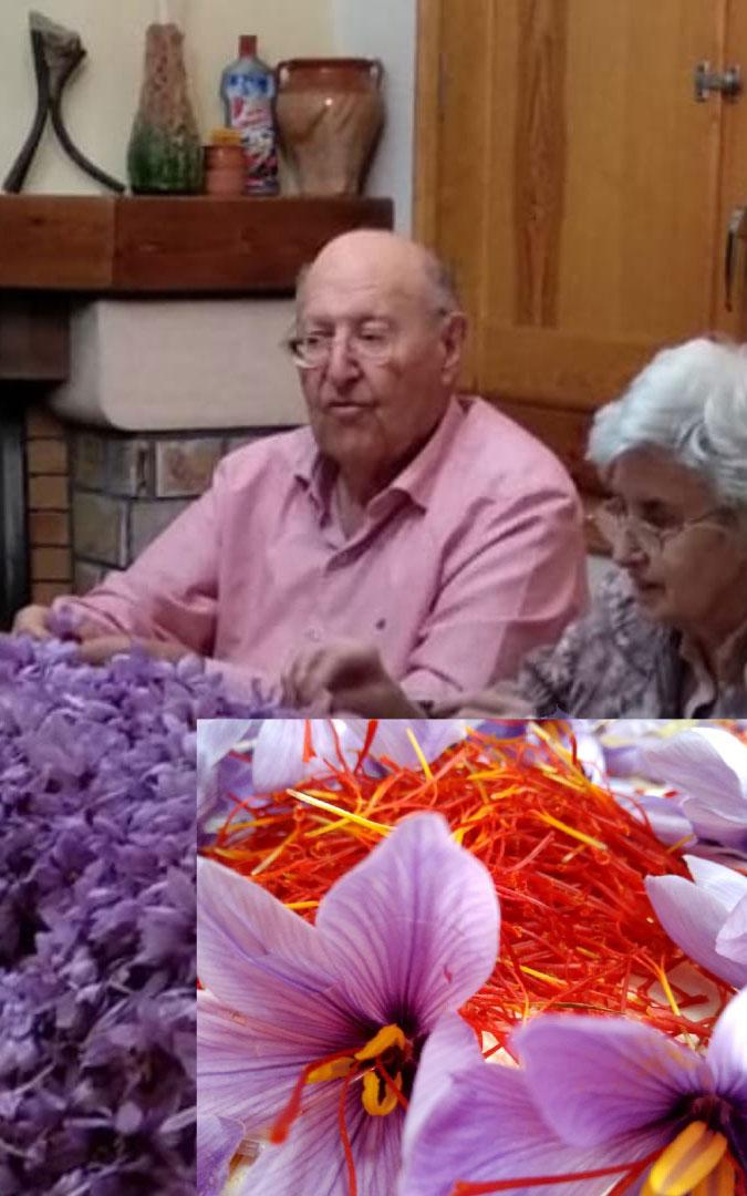 Antonio Bielsa y Teresa Pons, rodeados del cultivo que han recuperado. / E. B. P.