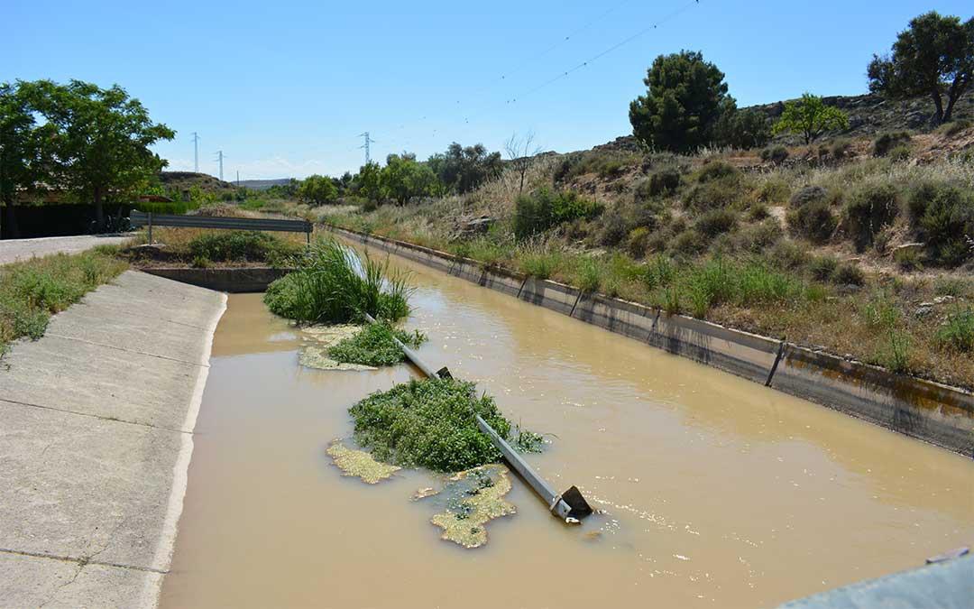 Estado de una de las salidas del canal de la Estanca de Alcañiz: un guardarraíl que cierra el paso y maleza./ M.C.